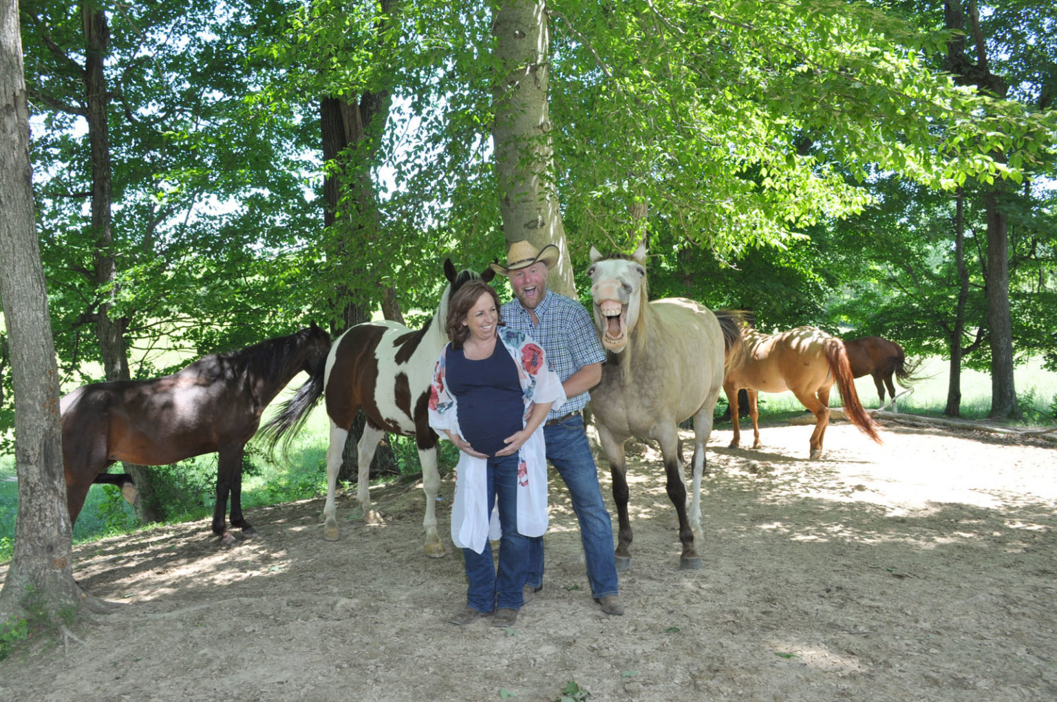 horse party crasher 4
