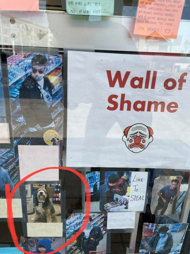 wall of shame1